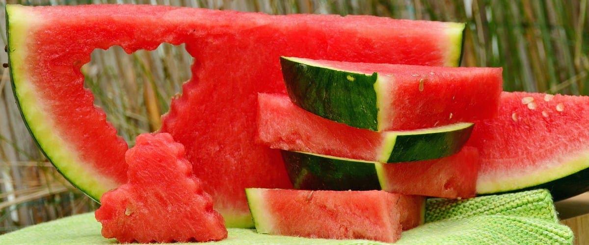 červený melón - dyňa červená